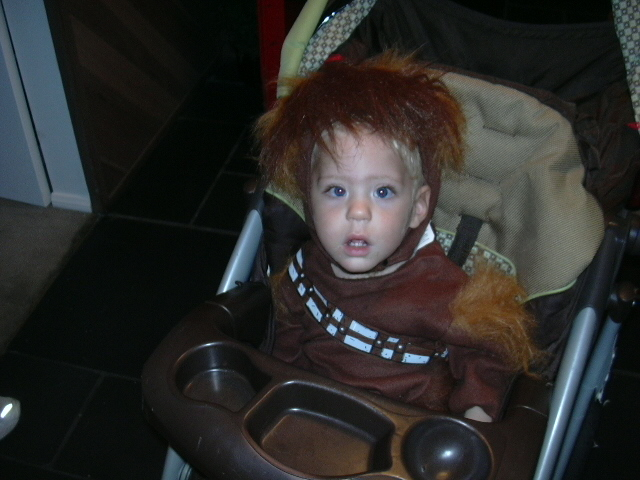 My wookie last night.