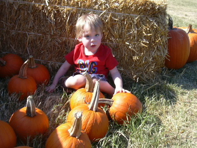 Daniel at the pumpkin patch.
