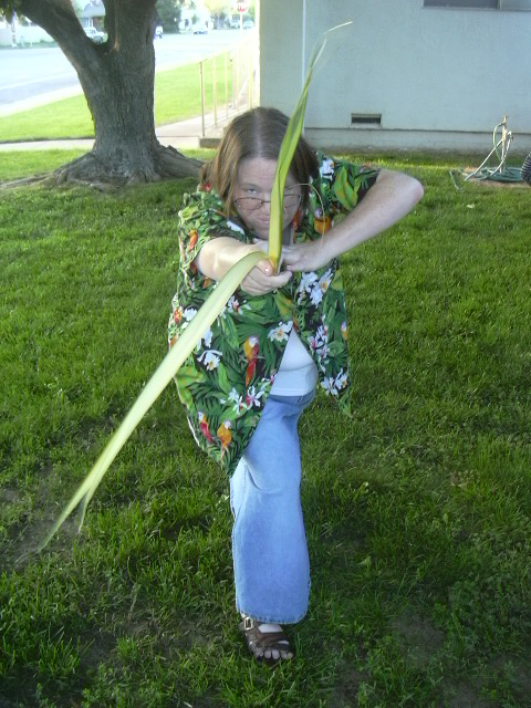 Of course I wasn't using my palm frond as a Celtic broad sword!