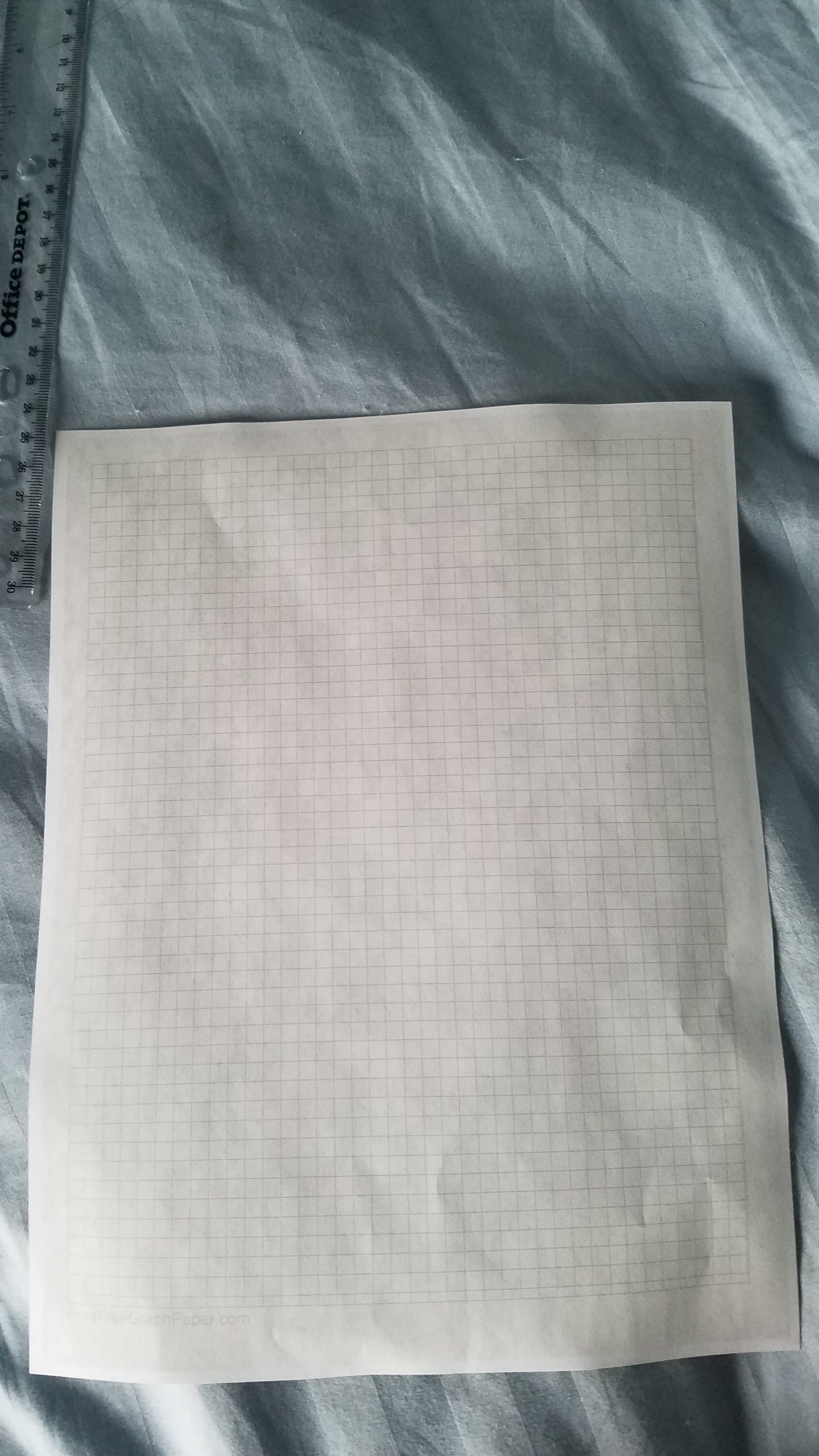 The graph paper on the back of my pictures.